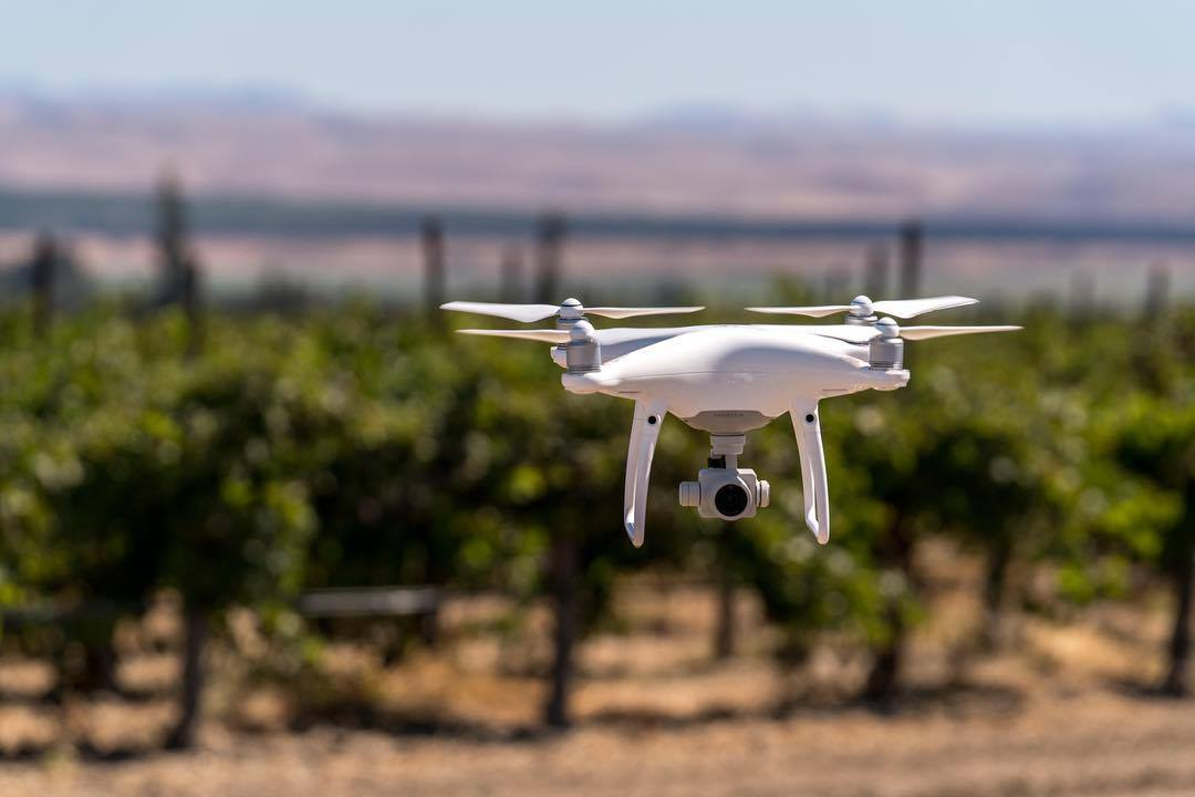 Part 107 Certified Drone Pilot in Salinas